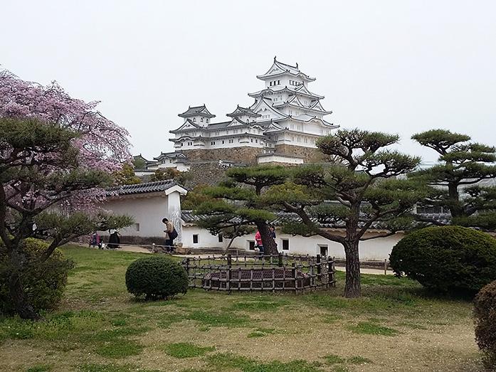 Himeji castle travel tips japan travel guide japan365days himeji castle hygo prefecture publicscrutiny Images