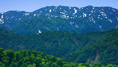 Shirakami Sanchi Mountain Range