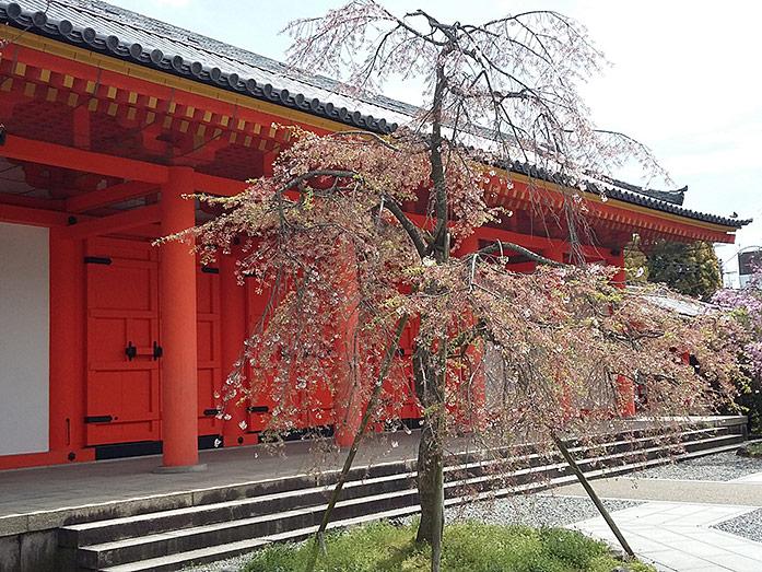 Sanjusangendo Temple Kyoto Travel Tips - Japan Travel Guide - japan365days.com